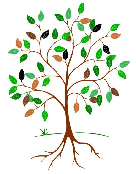 Giving Tree Update: How to Donate